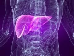 Synergy Nutrition-OPTIMUM LIVER HEALTH